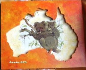 tableau australie koala