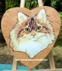 chat persan - angora - coeur