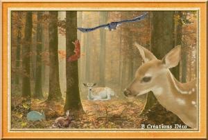 habitants de la forêt