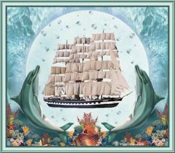bateau - voile