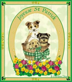 Saint Patrick - Irlande - chien