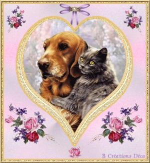 Saint Valentin - chien - chat