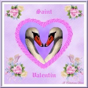 Saint Valentin - cygne - coeur -