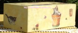 boîte mouchoir - chat