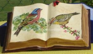 livre - peinture - oiseaux