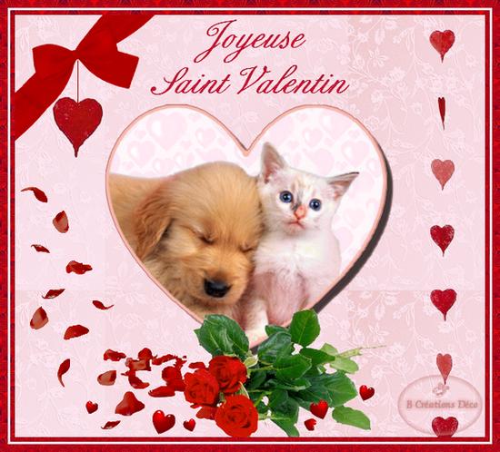Saint valentin - Saint valentin image coeur ...