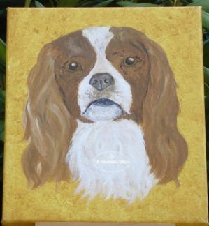 Toile cavalier king charles acrylique